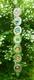 Chakra Mobile - Länge 76 cm