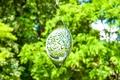 Mobile, Yggdrasil Weltenbaum mit Kristallen, groß