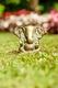 Ganesha - Messing, 7 cm