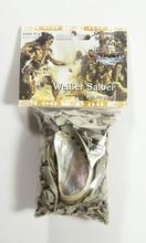 Kräuterset - Weißer Salbei mit Muschel ca. 15 g Beutel