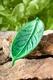 Räucherstäbchenhalter - Blatt - grün