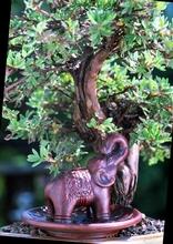Räucherhalter Elefant auf Lotusblume Ø ca. 8 cm
